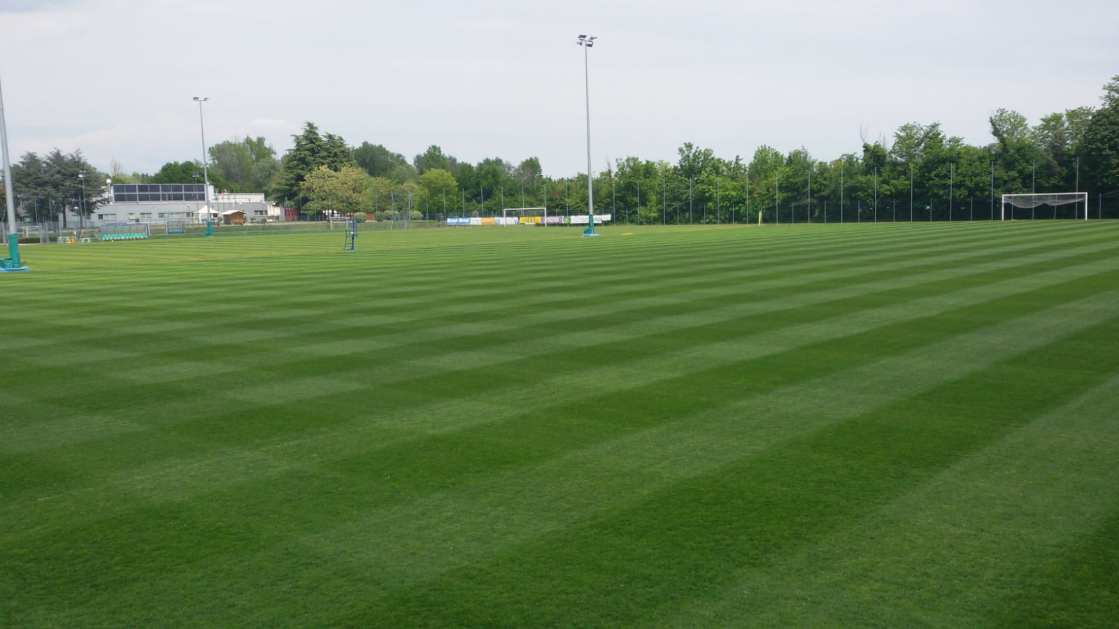 Campo POWERgrass di Pordenone - Estate 2020